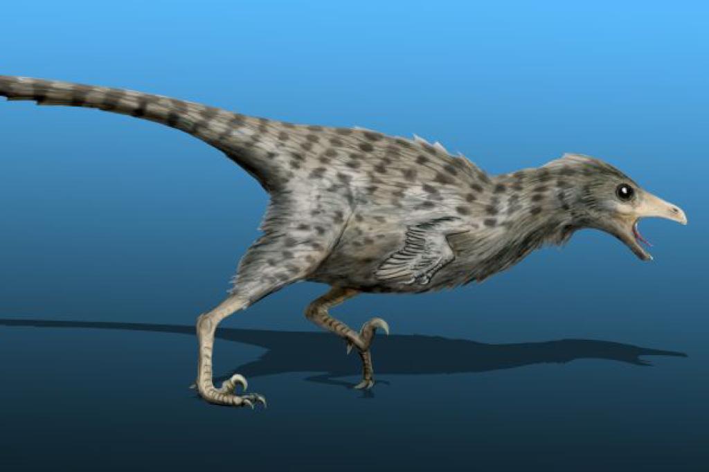 Quantos anos viviam os dinossauros? Deinonicossauro