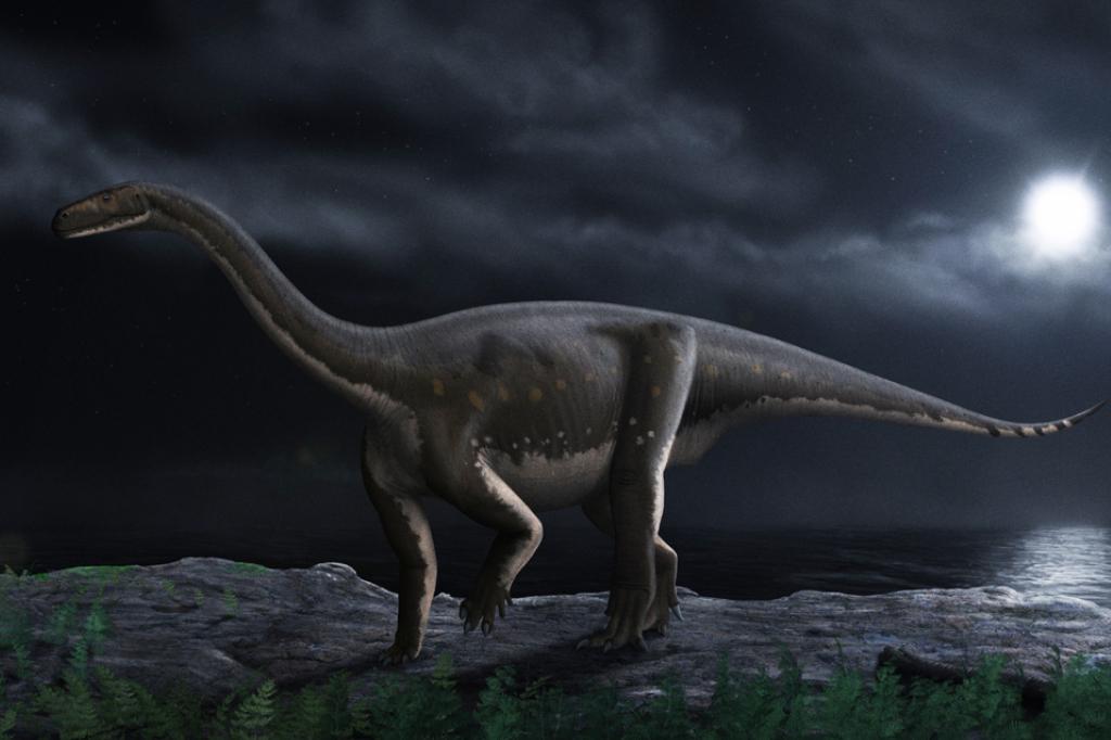 Quantos anos viviam os dinossauros? Melanossauro