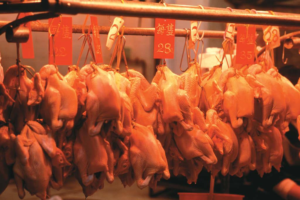 Hoje são abatidos, em um dia, nos EUA, tantos frangos quanto os que eram mortos em um ano em 1930