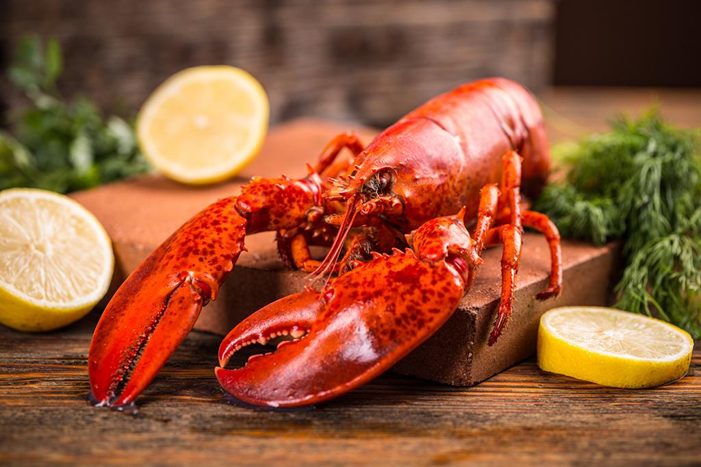 Por que crustáceos de qualquer cor ficam vermelhos na água fervente?