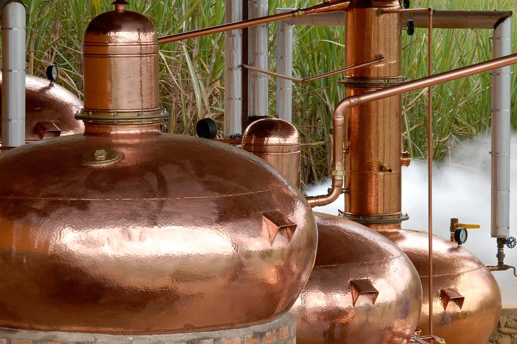 Da cana à caninha: destilação