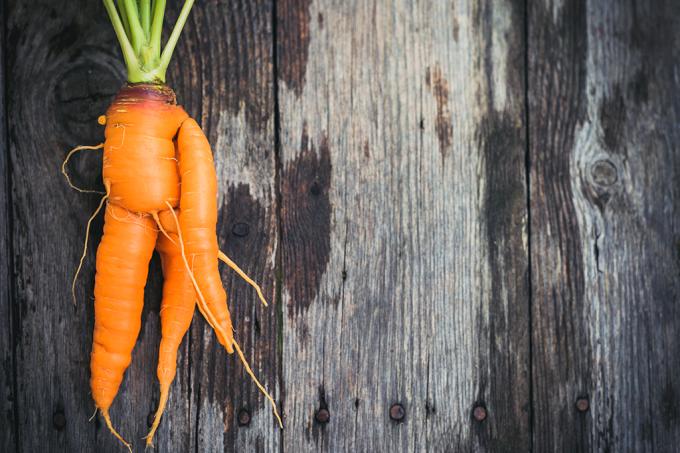 Deveria ser ilegal desperdiçar comida?
