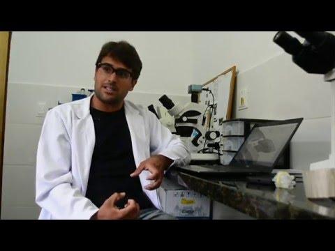 Biólogo explica como a lama dizimou microorganismos importantes
