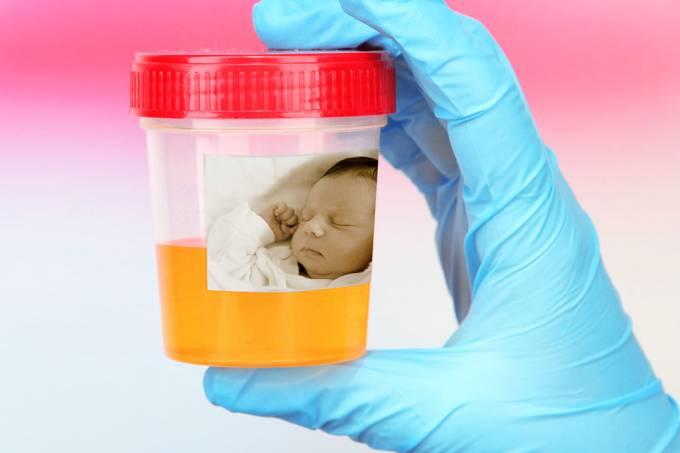 Xixi de bebês pode curar rins de adultos