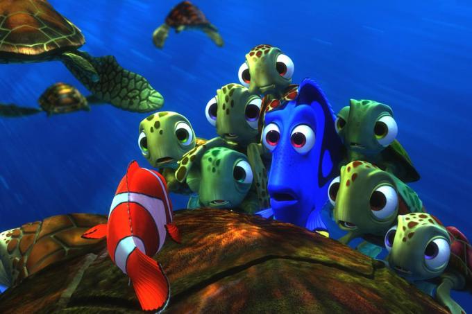 """""""Peixes não existem"""", diz toda uma classe de cientistas. E faz sentido"""