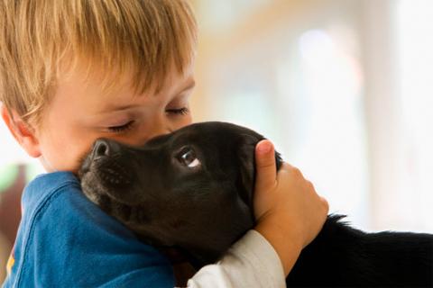 Bubbers tem 8 anos de idade. Segundo os donos, é o cão mais doce do mundo.Esta é a primeira vez que participou do concurso do cão mais feio do mundo.