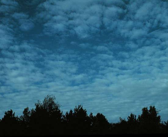 Cirrocumulus: têm aspecto enrugado e formação parecida com as nuvens do tipo cirrus, mas são mais delgadas e verticais. Sua distância do solo pode atingir até doze quilômetros. Diferente das altocumulus, não formam sombras.