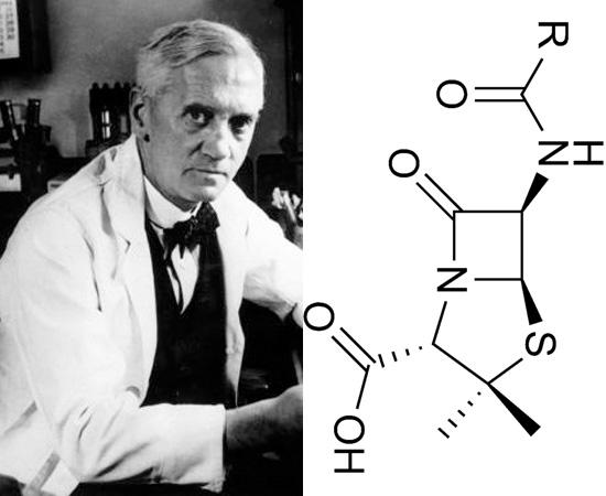 PENICILINA (1928) - O médico Alexander Fleming foi o responsável por descobrir este antibiótico natural. A identificação da penicilina proveu grandes contribuições à sociedade da época, que sofria com doenças infeciosas de origens bacterianas.