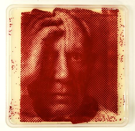 A foto de Pablo Picasso na placa de Petri também foi feita a partir da <i>Serratia Marsescens</i>.