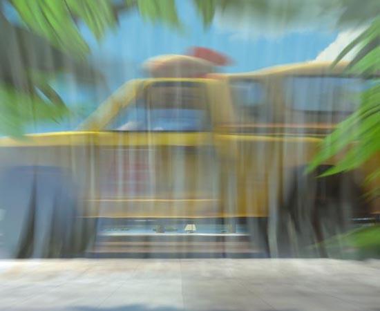 Já em Procurando Nemo (2003), é possível ver o carro amarelo da Pizza Planet quando os peixes estão tentando fugir no saco plástico cheio de água.