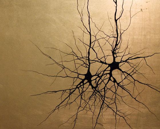 Misturando realidade e inspiração, ele usa como referência fotomicrografias (reproduções fotográficas ampliadas de objetos microscópicos) dessas células cerebrais.