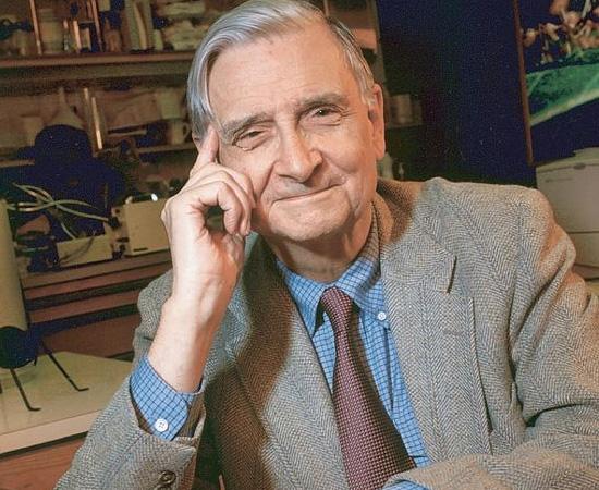 EDWARD OSBORNE WILSON (1929) - Biólogo estadunidense, pioneiro na Sociobiologia. Suas teorias sugerem que o comportamento animal (incluindo o humano) pode ser estudado por um viés evolutivo.