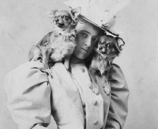 Edith Wharton equilibra seus dois cachorrinhos. Ela foi uma grande escritora americana. Ganhou o Pulitzer de 1921 pelo romance A Idade da Inocência.