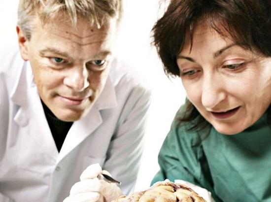 Já o Nobel de Medicina teve dois vencedores. Um deles foi o norueguês Edvard I. Moser.