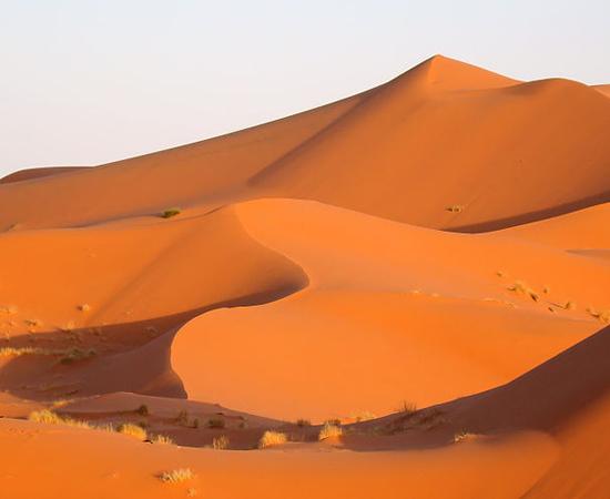 O Deserto do Saara é mais complexo do que se imagina. Esta região, por exemplo, é chamada de 'Dunas de Merzouga' e está situada no Marrocos, próximo à fronteira com a Argélia. Trata-se de um 'erg', ou conjunto de dunas, com 5 km de largura e 22 km de comprimento. Há quem se enterre na areia em busca de cura para doenças como o reumatismo.