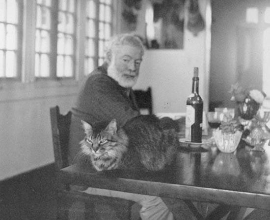 Ernest Hemingway e um de seus gatos. É um dos escritores mais famosos de todos os tempos. Escreveu O Velho E O Mar (1952) e recebeu o Nobel de Literatura em 1954.