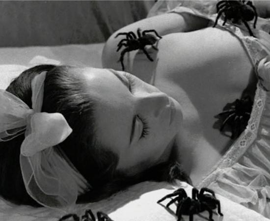 Em Esta noite encarnarei no teu cadáver (1967), dirigido pelo célebre Zé do Caixão, uma donzela passa pelo teste do medo: um cruel ataque de tarântulas.