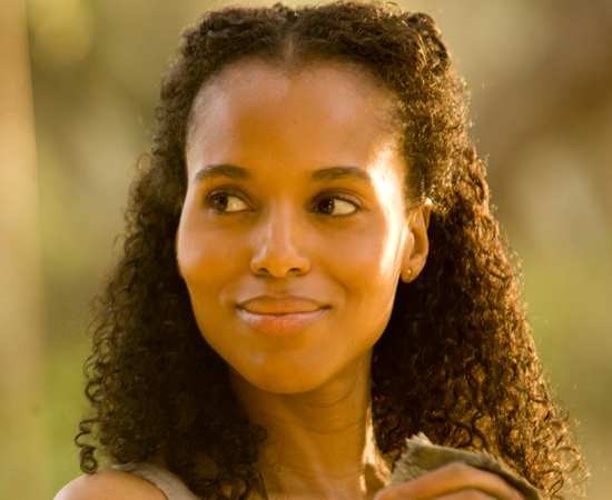 Aperfeiçoando suas habilidades vitais de caça, Django permanece focado em um único objetivo: encontrar e resgatar Broomhilda (Kerry Washington), a esposa que ele havia perdido para o tráfico de escravos há muito tempo.