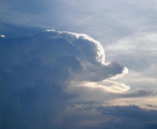 Esta nuvem que parece um golfinho foi encontrada no céu de Phnom Pehn, no Camboja.