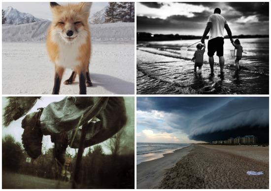 O IPPAWARDS é um concurso que premia as melhores fotografias tiradas com iPhone, iPad ou iPod. Veja as imagens campeãs da competição.