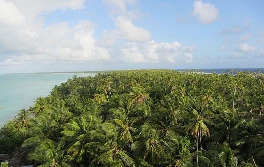32 atóis e uma ilha formam a República do Kiribati, um país do Oceano Pacífico. A soma da área das ilhas resulta num tamanho pouco maior do que a cidade de Nova York. No entanto, o território oceânico de Kiribati é 4 mil vezes maior - é considerado uma das maiores áreas de proteção do mundo.