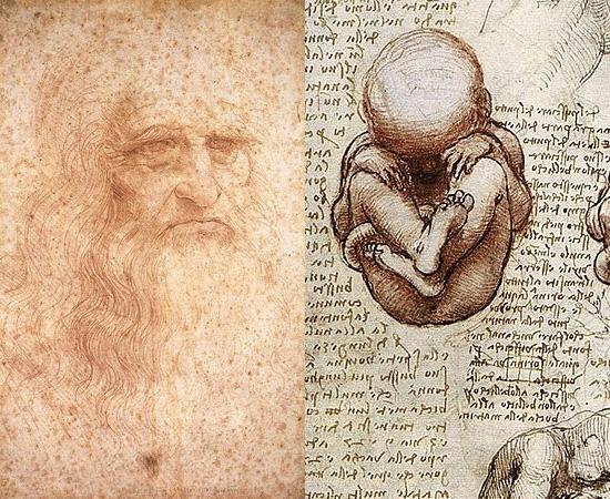 ESTUDOS DE ANATOMIA - Leonardo Da Vinci, mais célebre dos inventores da Renascença, prestou inúmeras contribuições à Ciência em vários campos do conhecimento. Uma das áreas mais exploradas pelo cientista foi a Anatomia. Da Vinci foi o primeiro a descrever alguns detalhes do corpo humano, como a posição do feto no ventre materno.