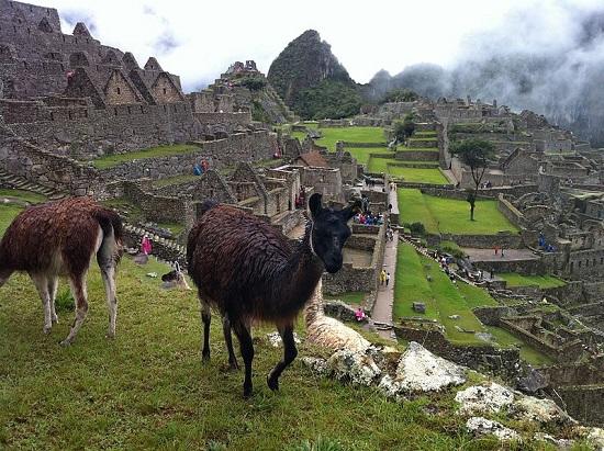 A cidade perdida dos Incas e maior símbolo do Peru também entra na lista. Machu Picchu também é uma das Sete Maravilhas do Mundo Moderno.