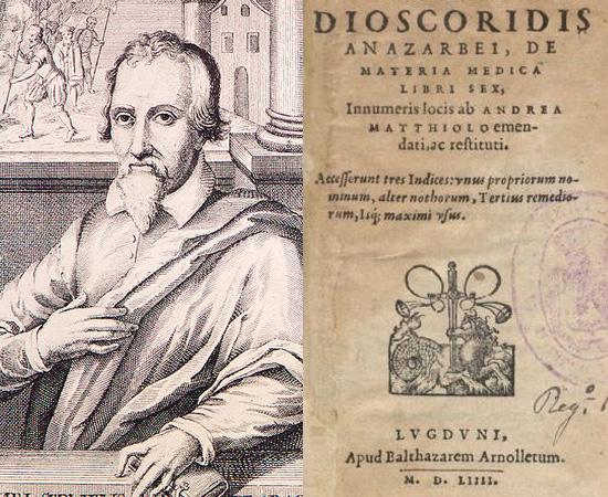 CIRCULAÇÃO PULMONAR (1553) - Michael Servetus foi um cientista e médico do Renascimento que descreveu, pela primeira vez, que o sangue bombeado aos pulmões retorna rico em oxigênio para o coração. Os estudos foram amplamente criticados na época, e permaneceram desconhecidos até as dissecações feitas poer William Harvey.