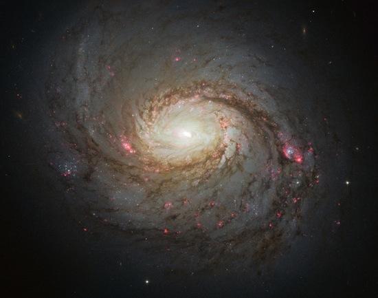 A galáxia M77 está a 47 milhões de anos-luz da Terra e possui 100 anos-luz de diâmetro. Seu núcleo compacto e brilhante é muito estudado pelos astrônomos que exploram os mistérios dos buracos negros supermassivos.