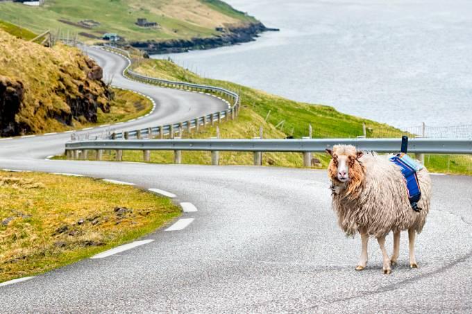 Divulgação | Visit Faroe Islands