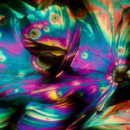 Feita a base de rum e suco de abacaxi, a Piña Colada tem um efeito bem bacana sob o microscópio.