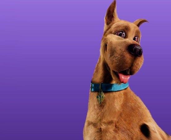 Scooby-Doo investiga crimes sobrenaturais desde 1969. É claro que ele conta com a ajuda dos amigos Salsicha, Daphne, Fred e Velma.