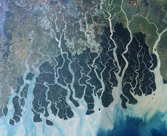 Não tenha preconceitos! O Ganges é um dos rios mais poluídos do mundo, mas seu delta continua sendo um grande santuário de espécies. Esta região de manguezal, chamada de Sundarbans, tem 140 mil hectares e abriga mais de 260 espécies, incluindo o tigre de Bengala, o píton indiano e o crocodilo do estuário. Uma boa opção para quem sonha em viver uma aventura na selva.