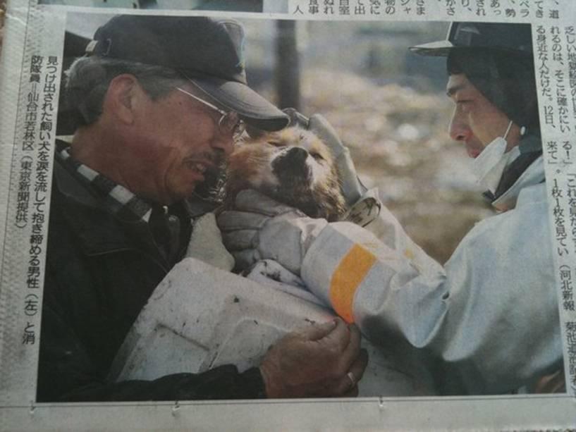 Um forte terremoto de magnitude 8,9 atingiu a costa nordeste do Japão, em março de 2011,gerando um tsunami de até 10mde altura que varreu a costa do país, matando288 pessoas. Na imagem, um sobreviventereencontra ocachorro que tinha perdido na tragédia.