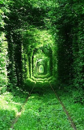 Túnel do Amor, Kleven, Ucrânia.