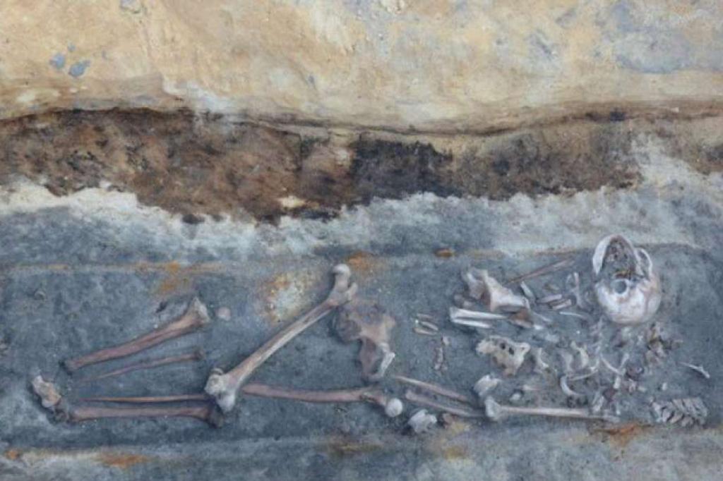Um dos esqueletos encontrados na Polônia: sinais de que uma estaca foi enfiada no peito do cadáver
