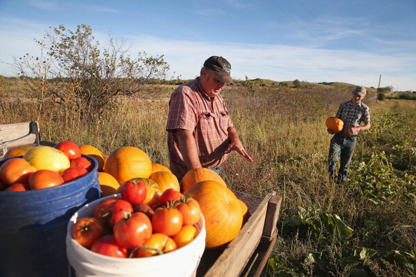 Uninsured Family Of Farmers Plans To Opt Out Of Affordable Health Care Act