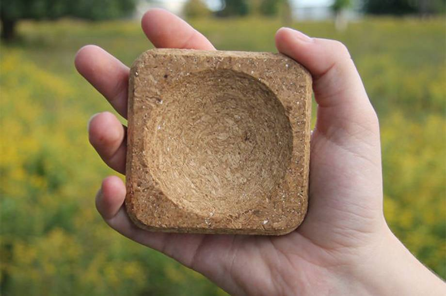 """A Ecovative Design não vende só móveis: eles também criaram um pacote chamado de Cultive Você Mesmo (ao invés de Faça Você Mesmo). É um saquinho que vem com lascas de madeira e fungos. Você adiciona farinha e água, chacolha, molda objetos simples e põe no forno - <a href=""""http://giy.ecovativedesign.com/#section-how-to-video"""" target=""""_blank"""">igualzinho a uma receita de bolo</a>. E eles garantem que, ao final da produção, os fungos param se crescer: assim você não precisa se preocupar com um champignon nascendo na sua cadeira."""