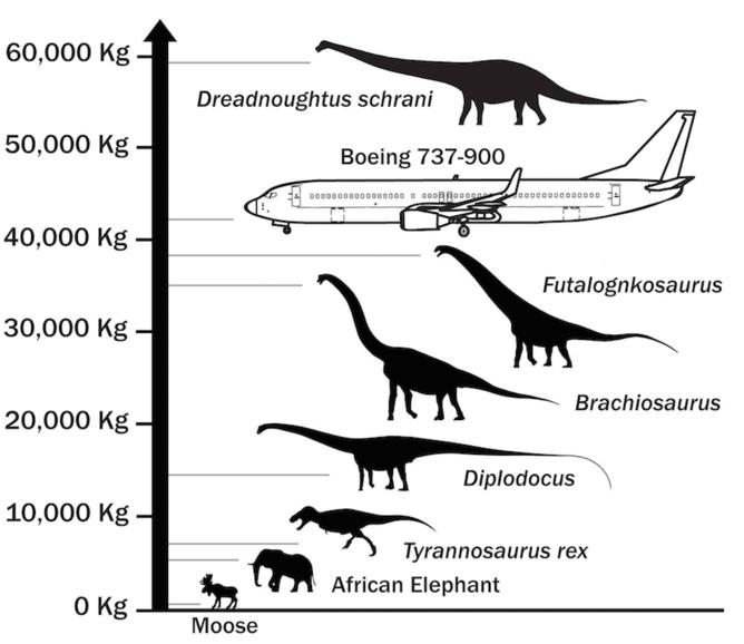 dinozão
