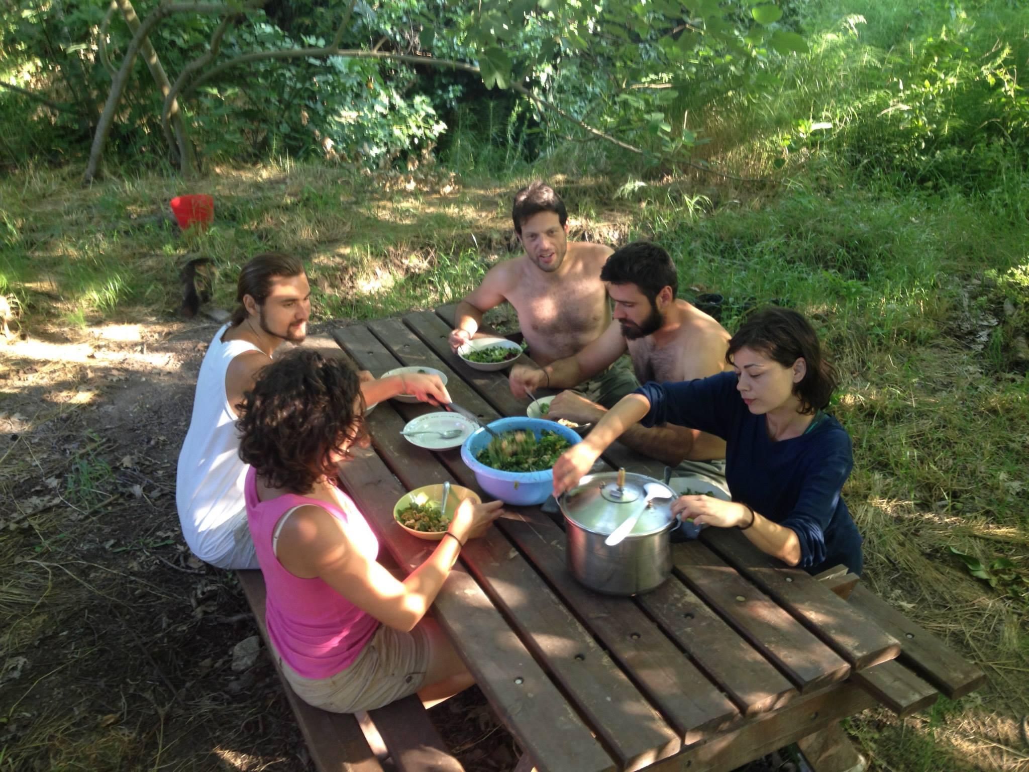 resposta-crise-jovens-fundam-comunidade-sustentavel-grecia1
