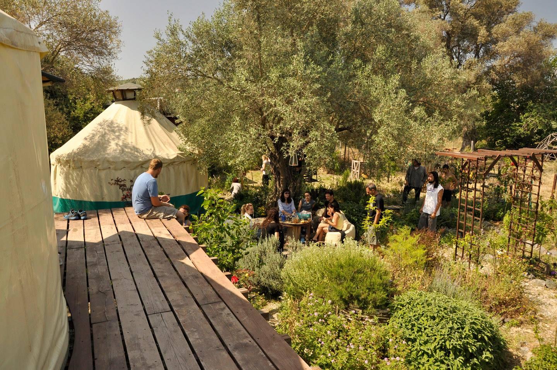 resposta-crise-jovens-fundam-comunidade-sustentavel-grecia6