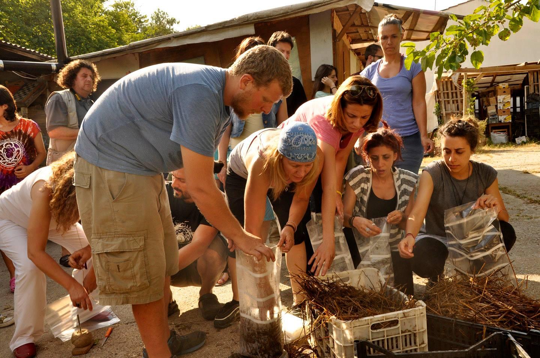 resposta-crise-jovens-fundam-comunidade-sustentavel-grecia7