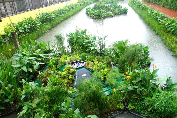 sistema-ecologico-recupera-rio-poluido