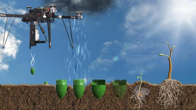 start-up-vai-semear-1-bilhao-arvores-com-drones-e-reflorestar-planeta-II-625
