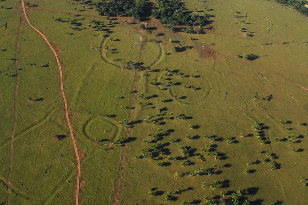 Desmatamento moderno revelou centenas de círculos no oeste da Amazônia brasileira