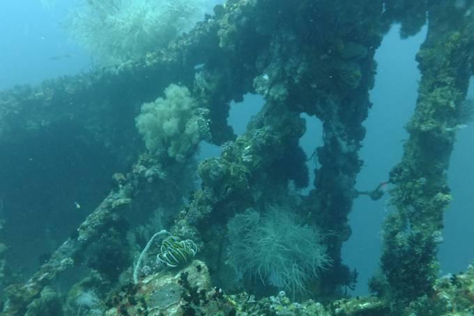 Navios afundados da 2a Guerra estão desaparecendo