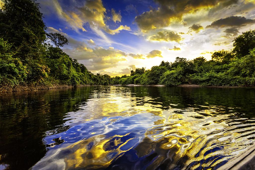 A Amazônia já foi mar (mais de uma vez) | Super