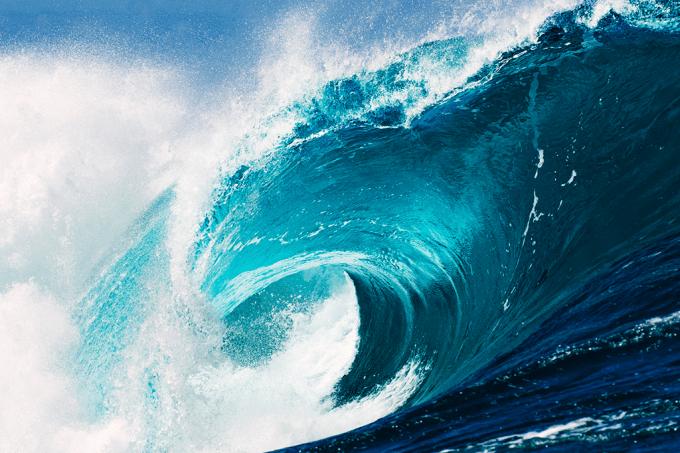 Veja o que você come quando engole água do mar