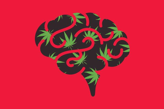 Correr causa mesmo estímulo no cérebro que fumar maconha