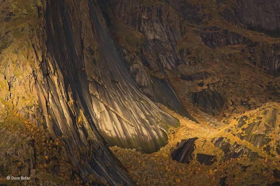 """Foto feita no vilarejo deHamnøy, em um arquipélago no litoral da Noruega. Na região, as encostas saem abruptamente da água e se elevam a centenas de metros de altura. No sopé, a folhagem amarela das bétulas contrasta com as paredes de rocha. Vencedor na categoria """"plantas e fungos""""."""
